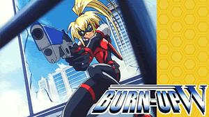BURN-UP W