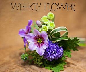 weeklyflowerアイコン