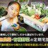 無農薬野菜のミレーアイコン